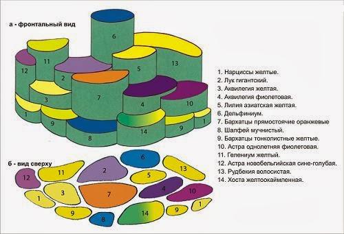 схема миксбордера 2
