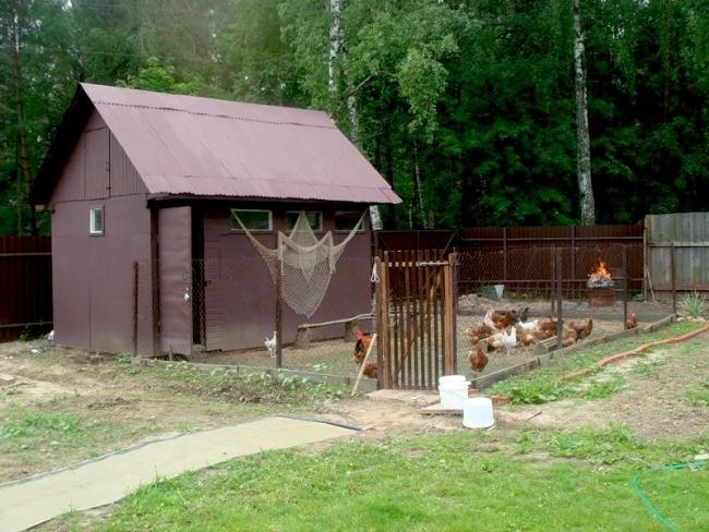 Как построить сарай для куриц своими руками видео