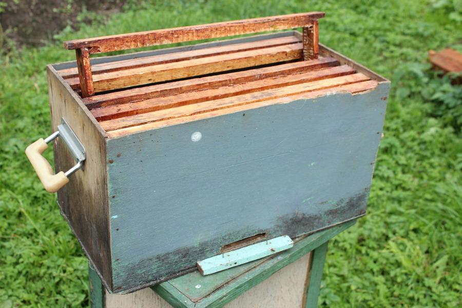 Ловушка для пчел своими руками чертеж 56