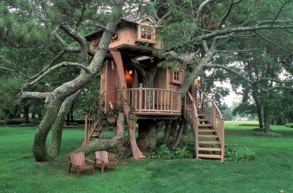 время в домике на дереве.