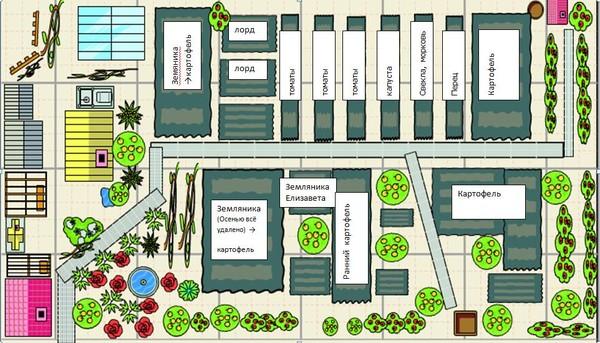 Схема огорода 4 сотки где что сажать фото