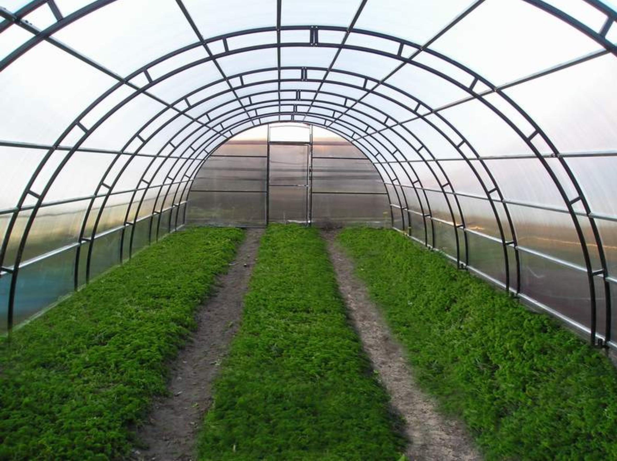 Огород своими руками частные фото фото 416