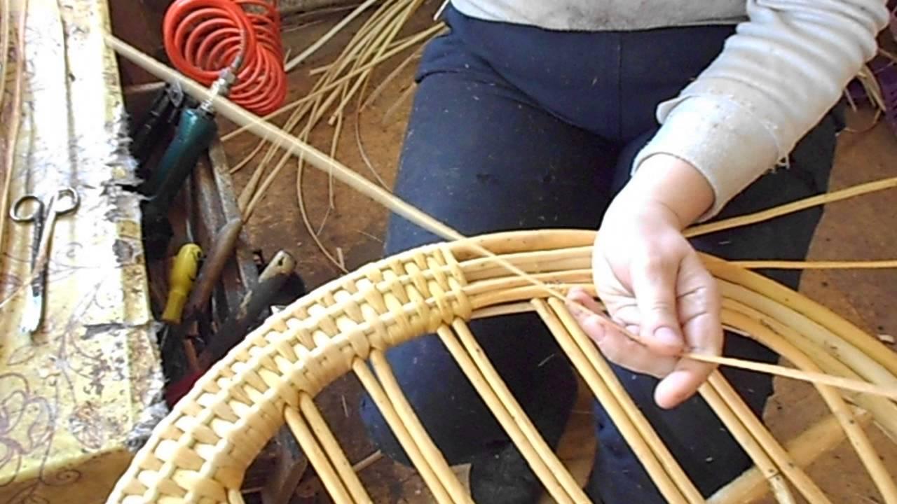 Когда заготавливать иву для плетения корзин